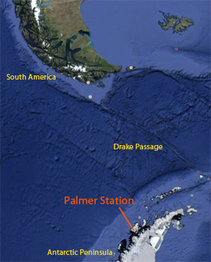 Palmer Station locator map showing Drake Passage and Tierra del Fuego