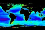 This satellite image shows the annual average phytoplankton chlorophyll (a measure of phytoplankton biomass) in the global ocean. It was made by averaging all of the data collected by the SeaWiF\'s satellite sensor during a single year.