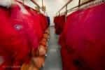 blur of Big Red parkas